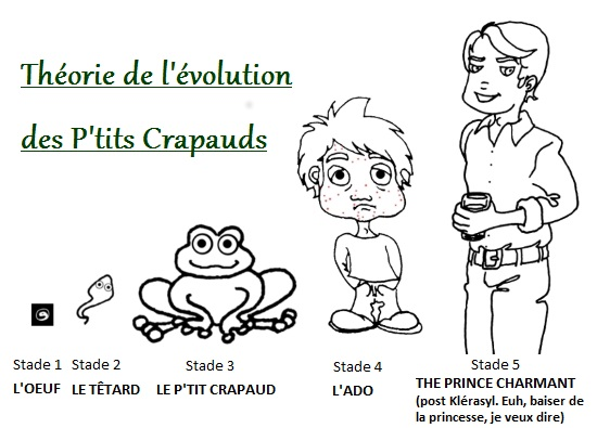Dessin de la Théorie de l'évolution (des P'tits Crapauds)
